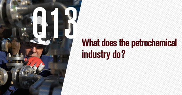 What does the petrochemical industry do?
