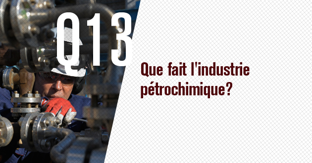 Que fait l'industrie petrochimique?
