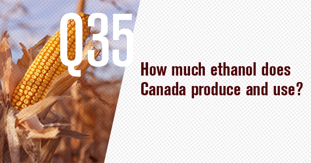How much ethanol does Canada produce and use?