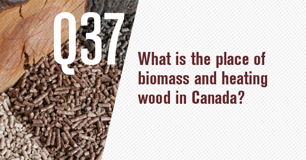 What is the place of biomass and heating wood in Canada?