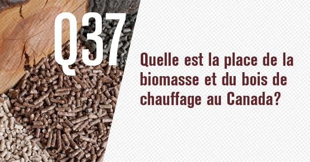 Quelle est la place de la biomasse et du bois de chauffage au Canada?