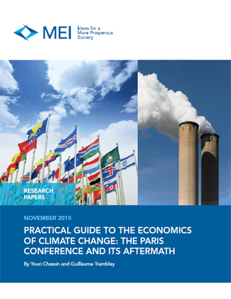 Practical Guide to the Economics of Climate Change: The Paris Conference and Its Aftermath